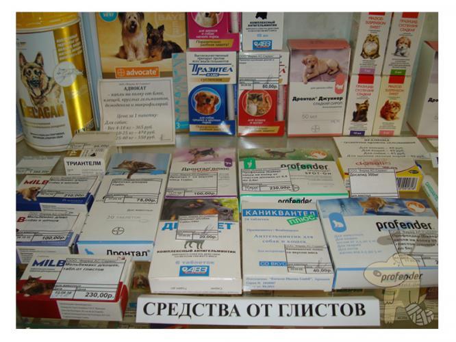 лекарства от глистов паразитов взрослых