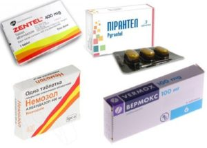 Как вивести паразитов из организма человека таблетками?