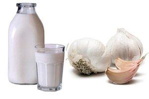 Молоко и чеснок - отличные компоненты для очистительной клизмы от глистов