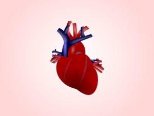 Глисты в сердце